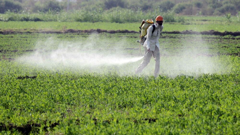 Ue invasa dai pesticidi illegali: sequestrate 1.200 tonnellate per un valore di 80 milioni di euro
