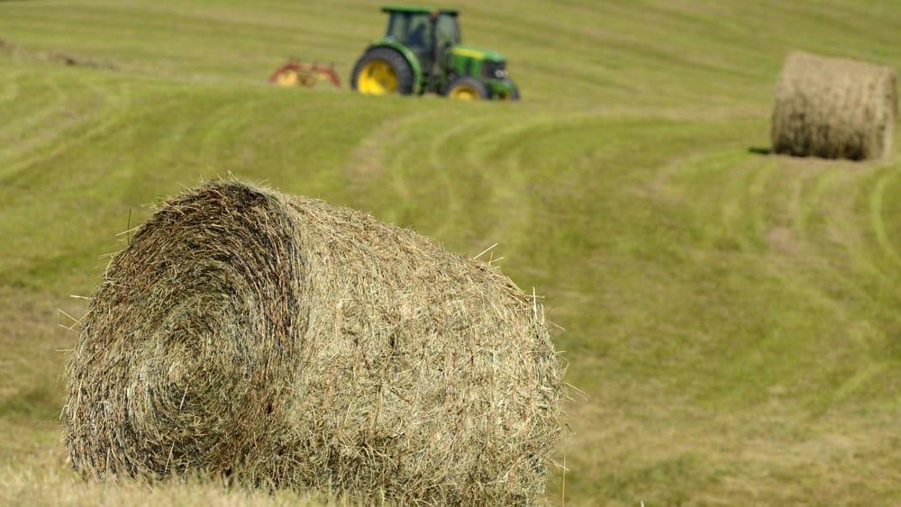 Ridurre i pesticidi e maggiore sostegno a giovani e bio, le raccomandazioni agli Stati per la Pac