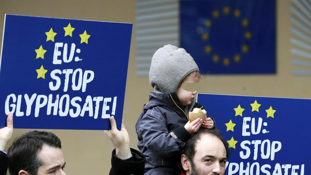 """""""Il glifosato non fa male"""": Francia, Olanda, Svezia e Ungheria chiedono all'Ue di non vietarne l'uso"""