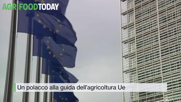 Tg AgriFoodToday: caldo e siccità, per l'Ue è allarme. Soprattutto al Sud