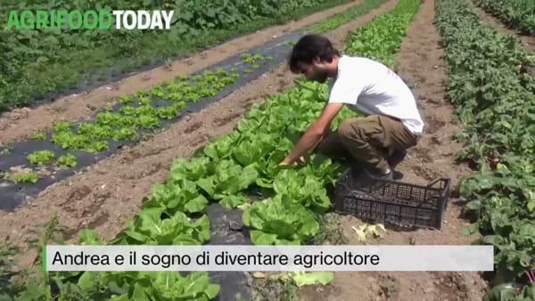 Tg AgriFoodToday: Andrea e il sogno di diventare agricoltore
