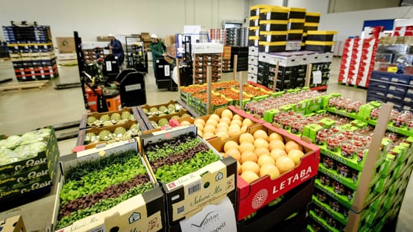 L'export agroalimentare italiano ha superato la quota record di 46 miliardi