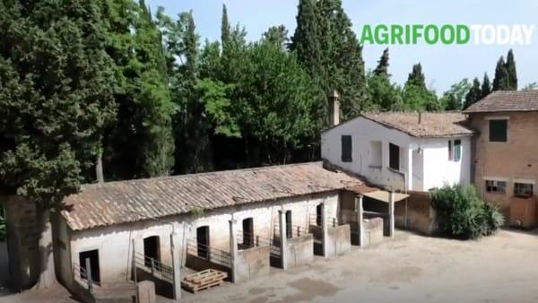 Dai banchi ai campi: l'azienda-laboratorio della scuola agraria più antica d'Italia