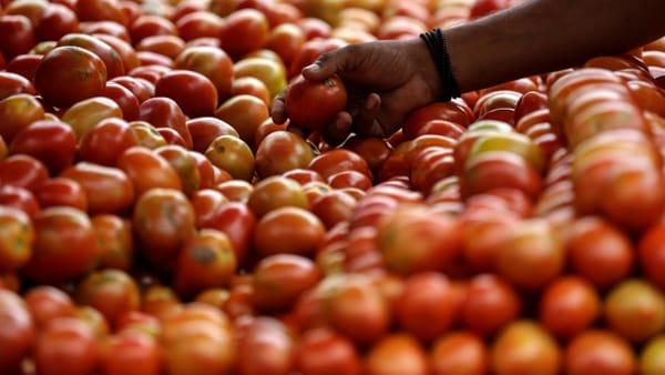 """Perché il pomodoro è """"re"""" delle diete ipocaloriche"""