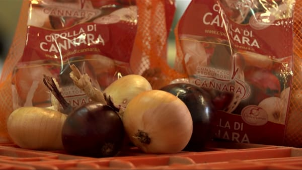 """Cannara, il paese dei """"cipollari"""" amato dai grandi chef"""