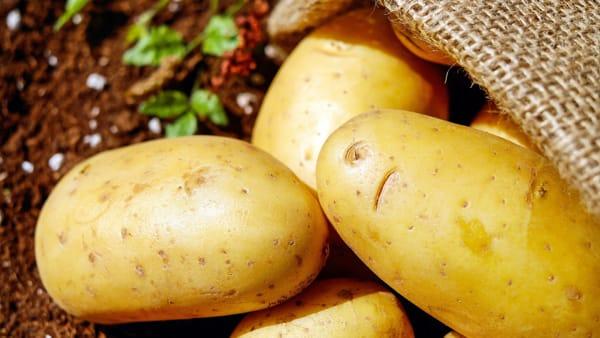 """""""Le patate fonte di energia, ma non sostituiscano le verdure"""""""