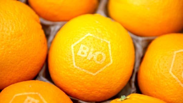In Ue si riducono le importazioni di prodotti biologici da Paesi terzi