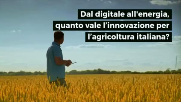 Big data e sostenibilità: quanto vale l'agricoltura 4.0