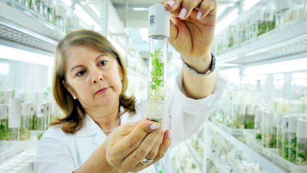 """""""L'editing genetico può salvare l'agricoltura italiana dal cambiamento climatico"""""""