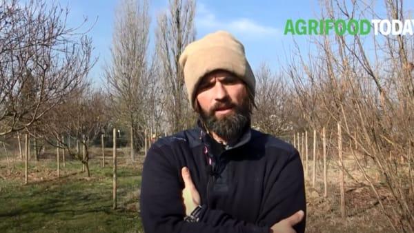"""""""Senza l'Ue noi agricoltori non avremmo fondi per investire e innovare"""""""