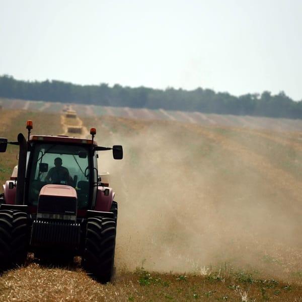 Bruxelles contro la Germania: deve impegnarsi di più per diminuire le emissioni agricole
