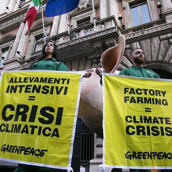 Allarme Onu: i sussidi all'agricoltura stanno accelerando la distruzione del pianeta