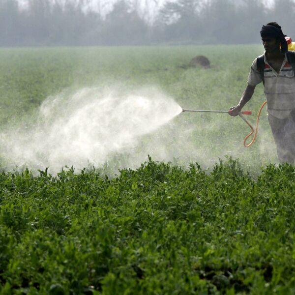 Pesticidi nelle camere da letto: in Italia trovati 13 residui nelle case vicine alle campagne