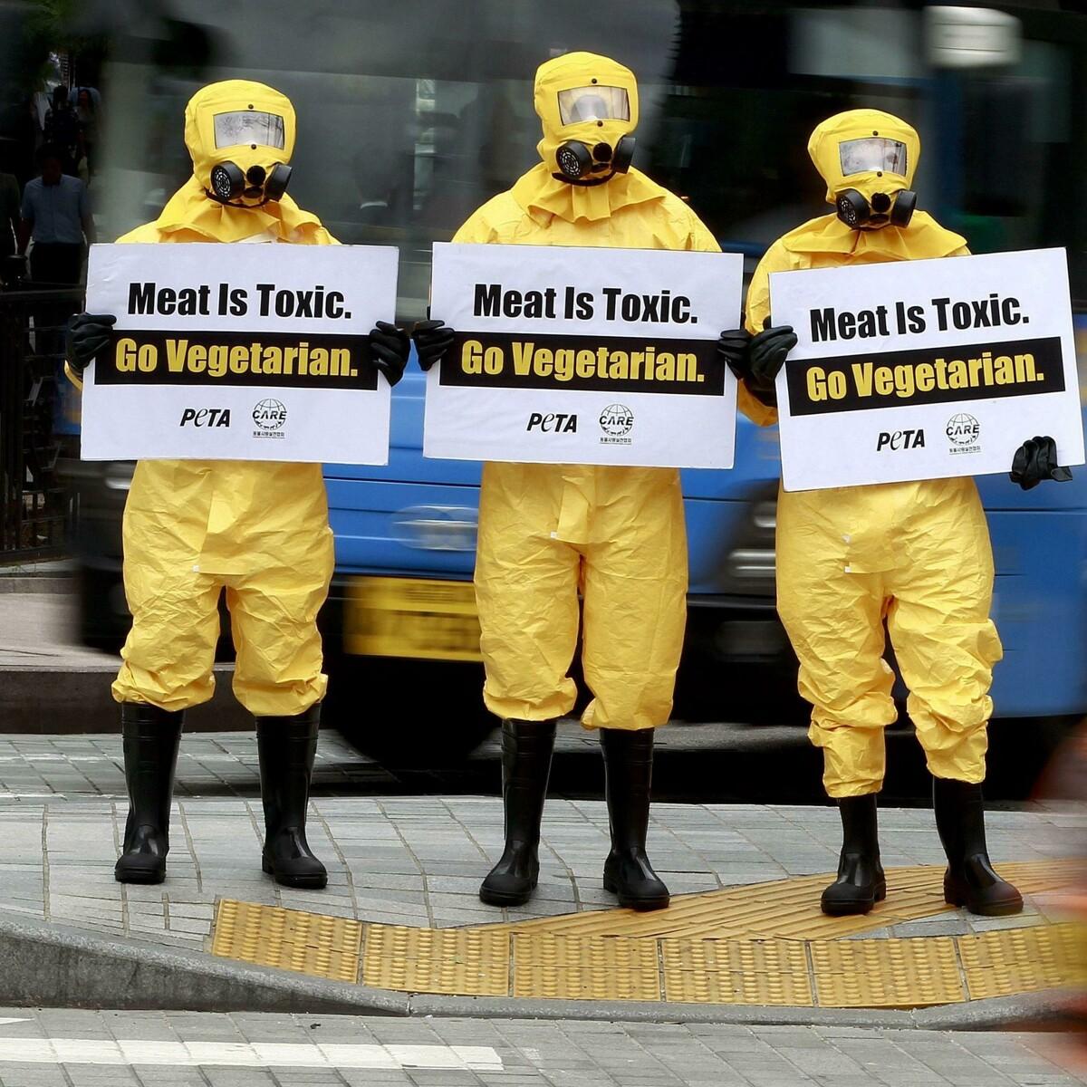 """L'appello degli scienziati all'Ue: """"Basta promuovere il consumo di carne in Europa"""""""