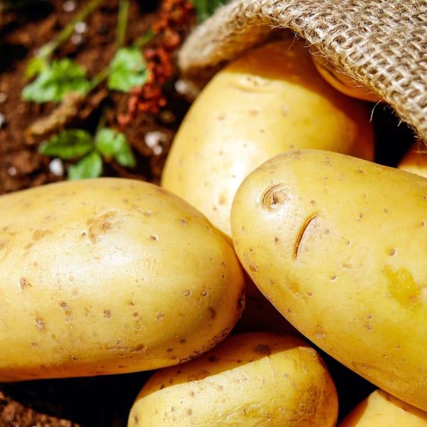 La patata non è solo contorno, va messa anche al centro del pasto (ma al posto di altri carboidrati)
