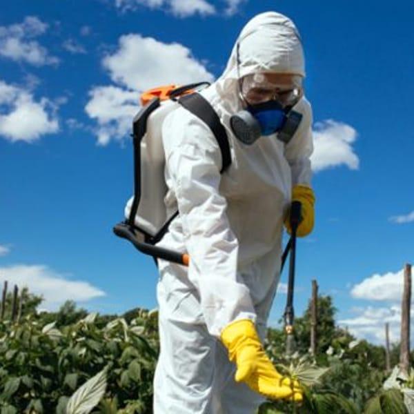 """Bocciato il divieto di tutti i pesticidi chimici in Svizzera, al referendum vince il """"No"""""""