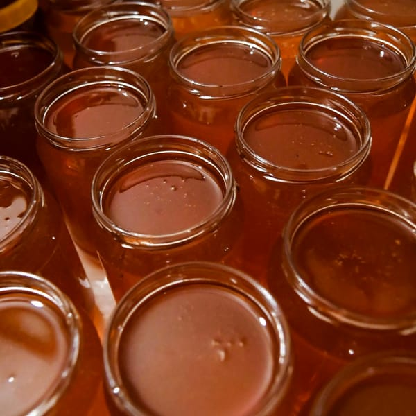 """Stop al miele """"tarocco"""" cinese: l'Ue vuole etichette più chiare"""
