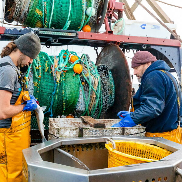 """Le cooperative contro l'Ue: """"Le politiche europee sulla pesca ci stanno affondando"""""""