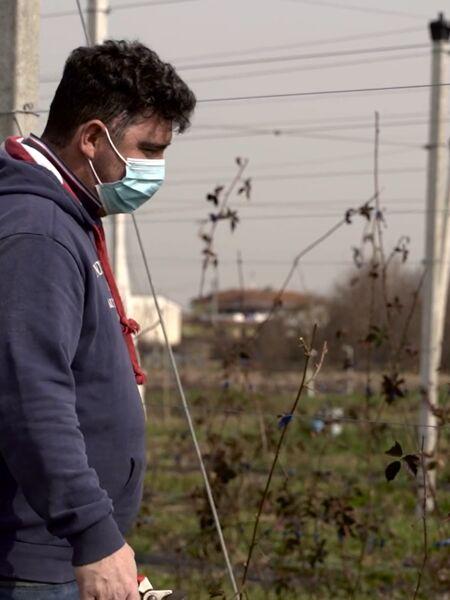 """""""Dal carcere ai campi, così a Cremona """"curiamo"""" le persone con l'agricoltura"""""""